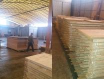 佛山木材烘干案例